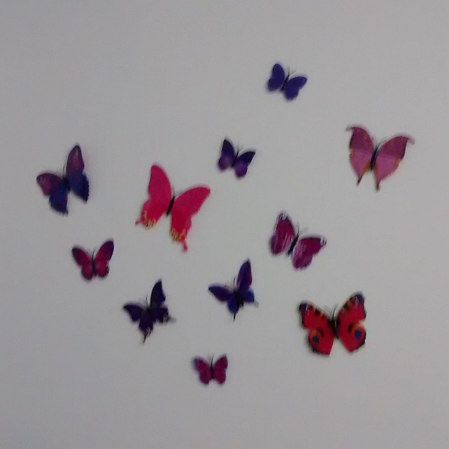 Flutterbys in my room!