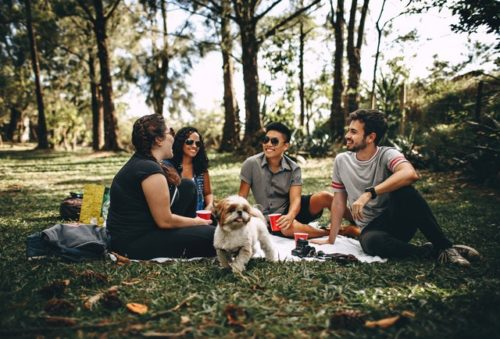 4 people and a dog having a picnic